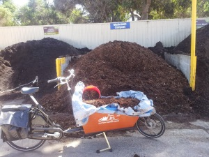 cargo bike compost